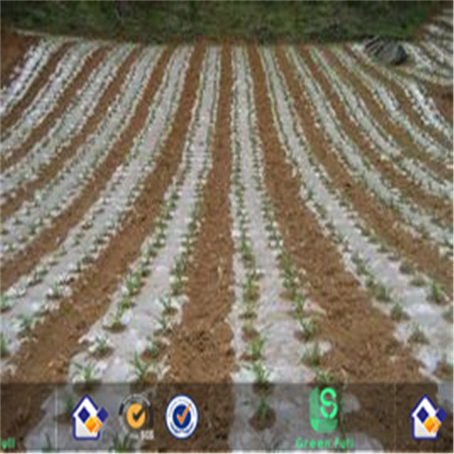 PP or PE Ground Cover Agricultural Weed Mat